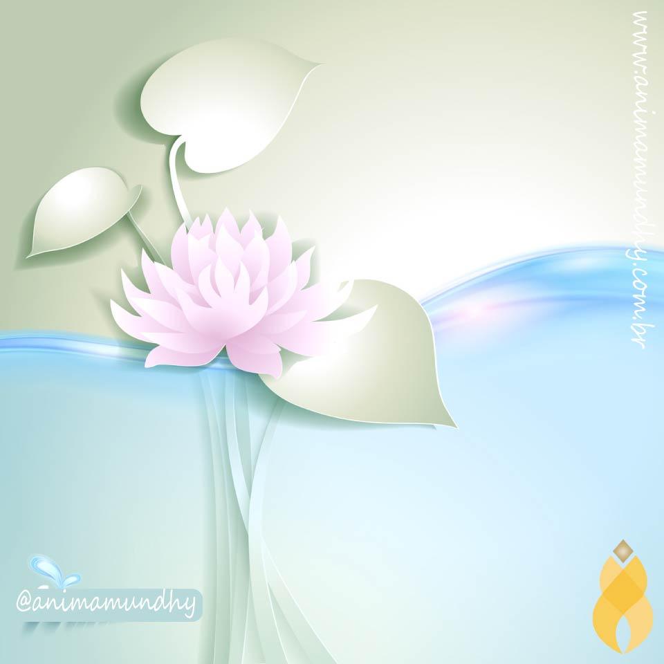 O atributo alt desta imagem está vazio. O nome do arquivo é lotus.-1.jpg