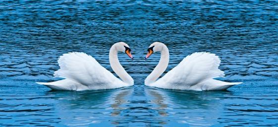 reconcilização-relacionamentos-afirmacao-de-luz.jpg