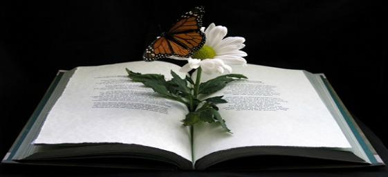 livro-curso-milagres-grupo-estudos_by_limnersphere.jpg