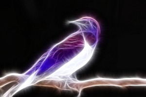 fractal_bird_by_tharena-d58n8sy
