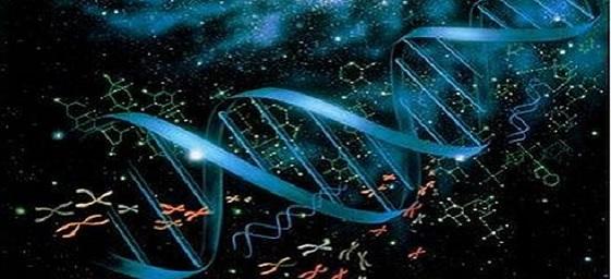 genoma-humano-3d-video-3.jpg